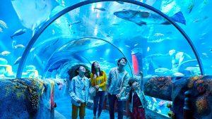 akuarium legoland malaysia