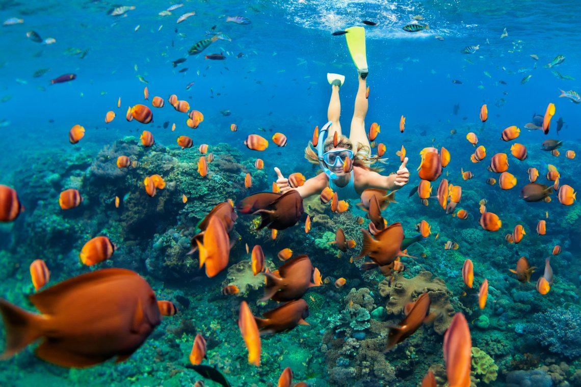 hawaii snorkel