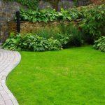 Membuat Taman? Cukup Gunakan Pilihan Rumput-rumput Ini